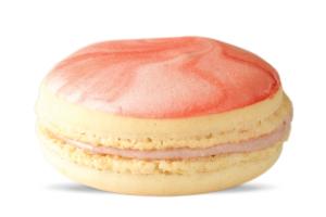 Cherry Cheesecake Macaron